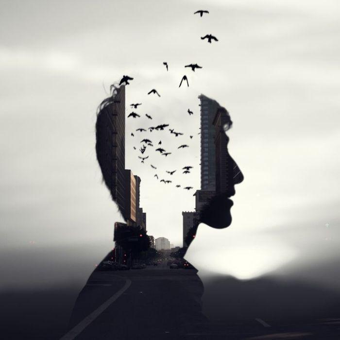 Pájaros en la cabeza —3 pequeñas cosas que los nefelibatasentenderán—.